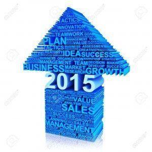 Ideas de negocios para 2015
